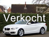 BMW 2 Serie Cabrio 220i High Exe | Luxury line | Driving ass. | Parking ass. | HiFi | Leder | Camer