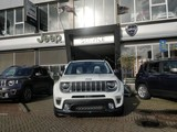Jeep Renegade 150PK Freedom automaat Polar Plunge
