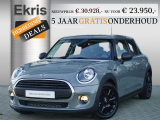Mini Mini 5-deurs Salt + Business + PDC
